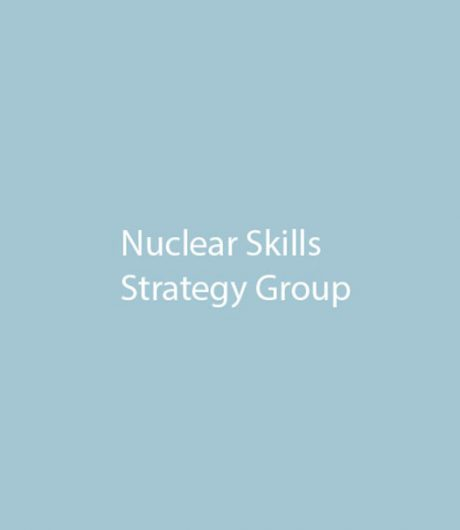 Nuclear Skills Strategy Group (NSSG)